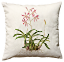 Kuddfodral Sköna Ting 50x50 - Kuddfodral orkide