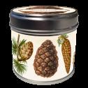 Doftljus - Doftljus vanilj, kottar