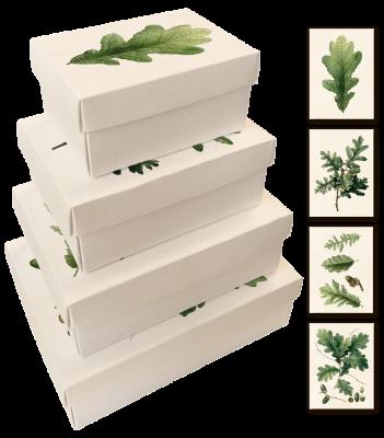Pappersboxar Sköna Ting (4 st) - Pappersboxar ekollon