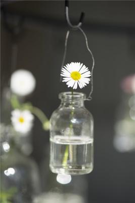 Flaska mini med svart upphängning Ib Laursen -