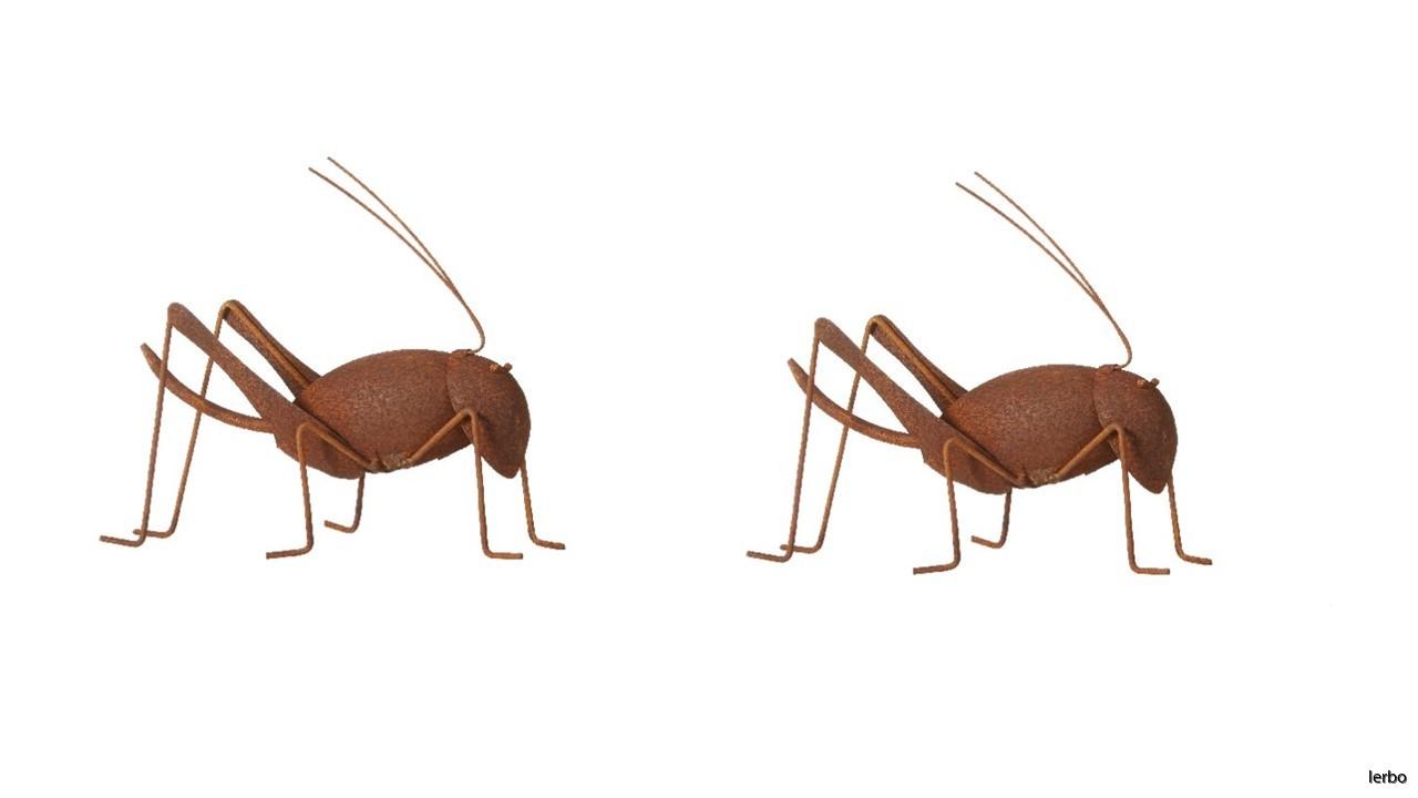 2 pack gräshoppa
