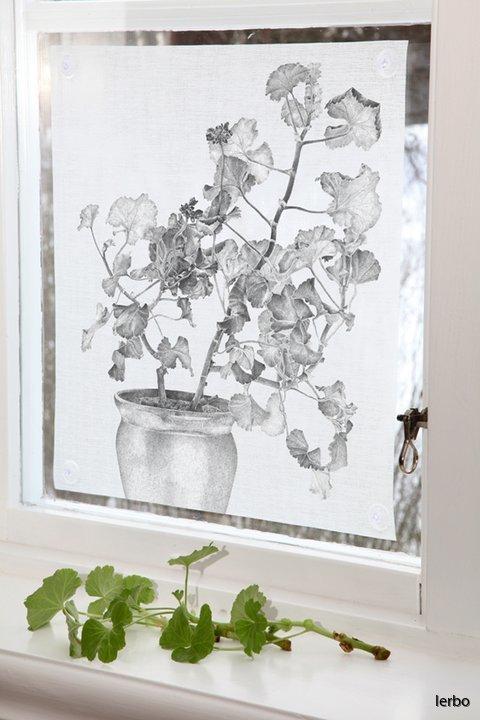 fönsterskydd stor svart pelargon