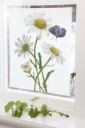 Fönsterskydd stor Design Emma Sjödin
