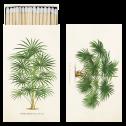 Tändsticksask - Tändsticksask palmer