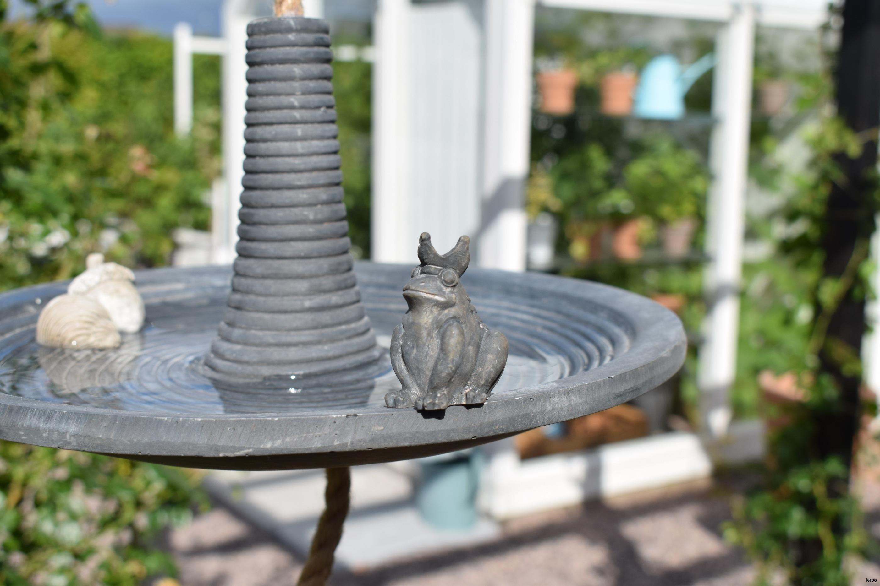 hängande fågelbad eldgarden med groda