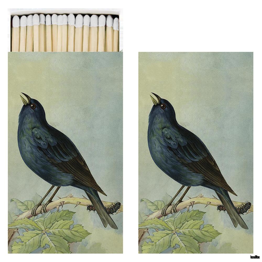 tändsticksask fåglar