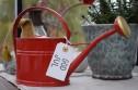 Vattenkanna GardenMind oval m stril 1,7 liter olika färger - Vattenkanna 1,7 liter röd nyhet