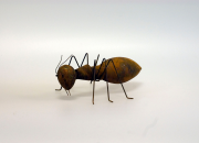 Myra rostfärgad liten