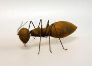 Myra rostfärgad stor