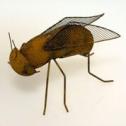 Insekter i rost Wikholm Form - Fluga