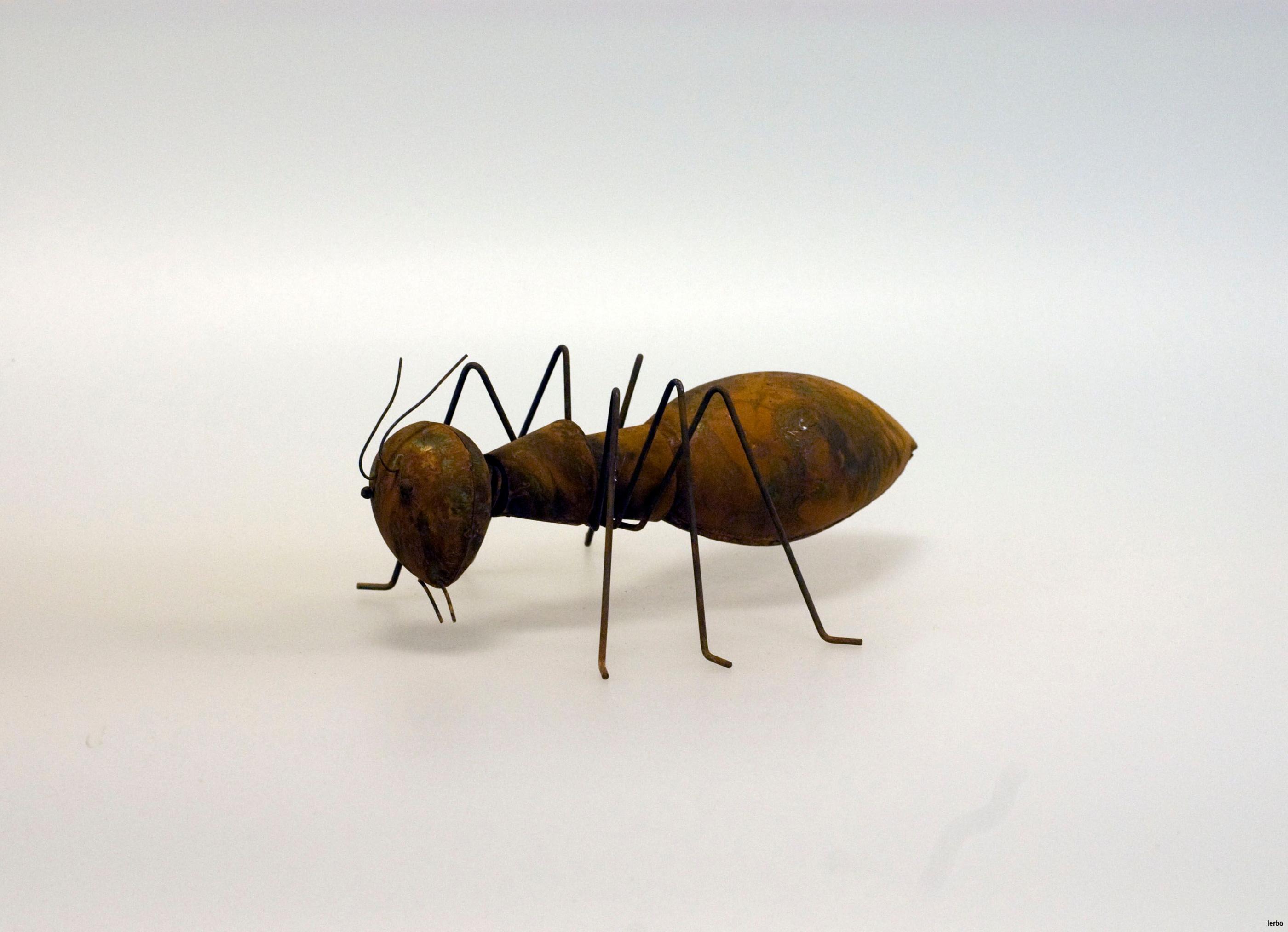 rostig liten myra