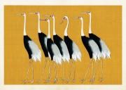 Poster vintage fåglar, 70*50 cm Sköna Ting