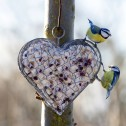 Hjärta i hönsnät ELDgarden öppningsbart