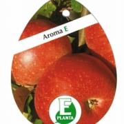 Aroma E