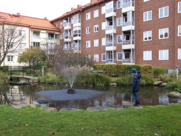 Fördröjning av flöde genom att skapa dammar i ekostadsdelen Augustenborg, Malmö