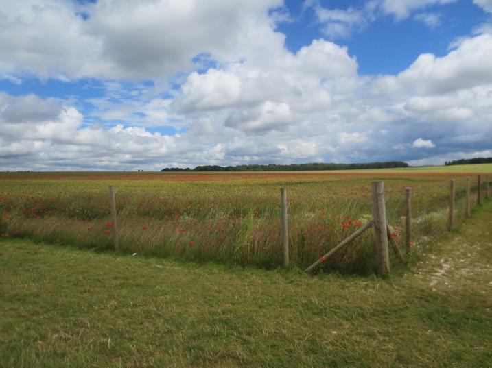 Engelska landsbygden sedd från Stonehenge