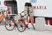Ave Maria cykel II