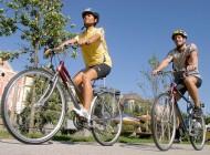 Unisex cykel, 7- eller 21 växlad.