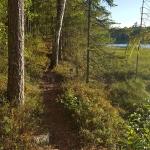 natural-pathway