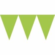 Vimpel 4,5m kiwi 29kr