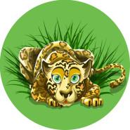 Tårtbild Jungel leopard 59kr