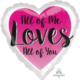 Folieballong 43cm All of me loves all of you -