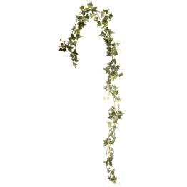 Murgrönagirlang 1,82m -