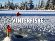 Vinterfiske