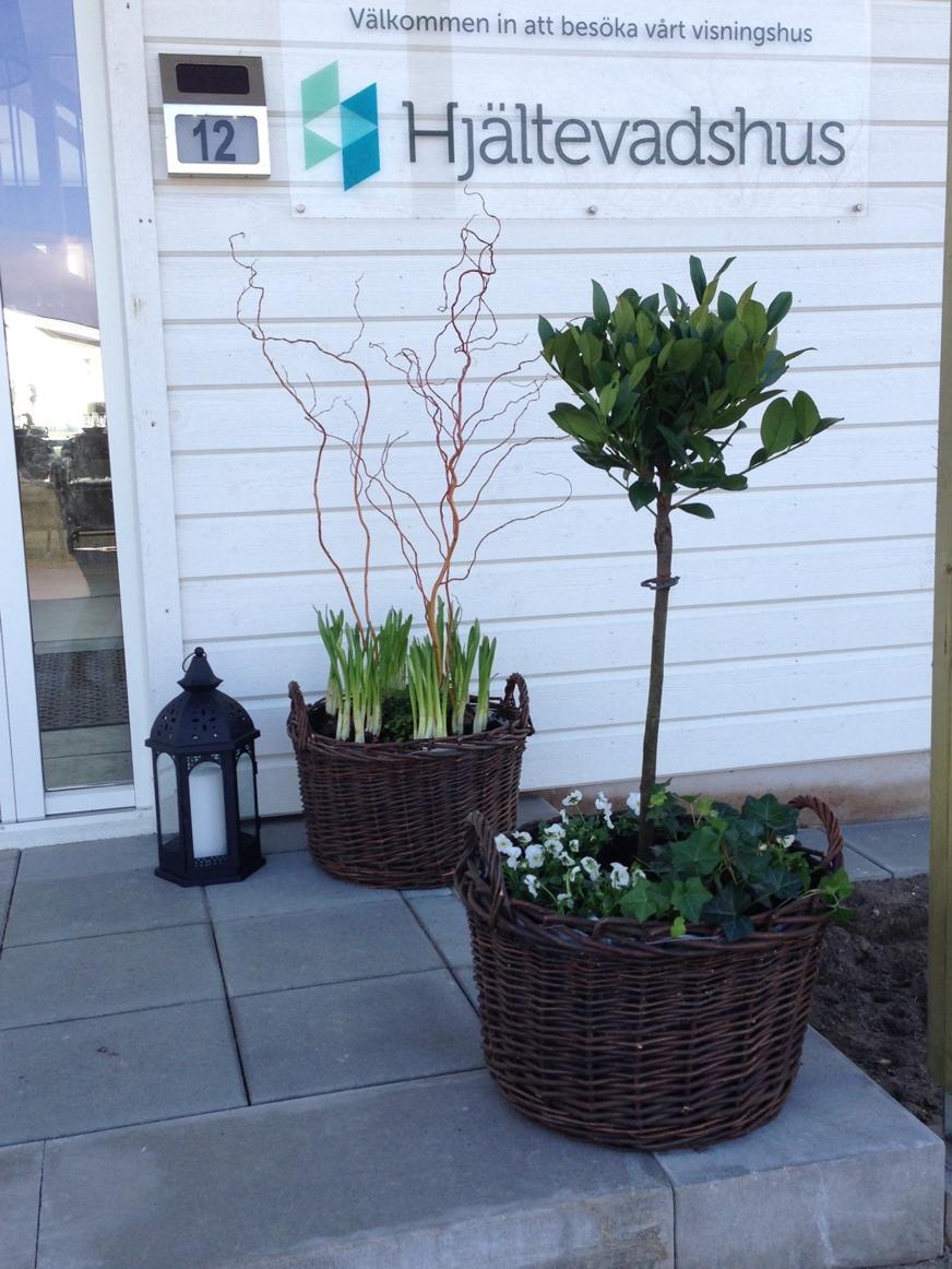 Exempel på plantering vid entré