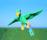 Flygande, 34 Papegoja