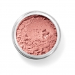 bareMinerals Blush - Golden Gate 0,85gr
