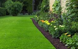 Kuskatorpets gräsjord ger dig grönare gräsmatta.