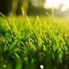 Storsäck - Kuskagräsjord