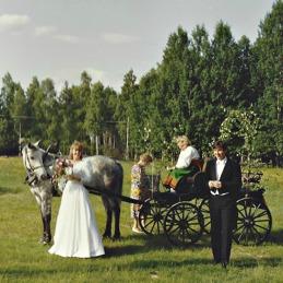 När vår egen Lotta gifte sig med Pär, så blev det häst och skrinda. Pär på tryggt avstånd från hästen.