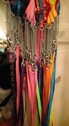 Halsband-koppel 120:-