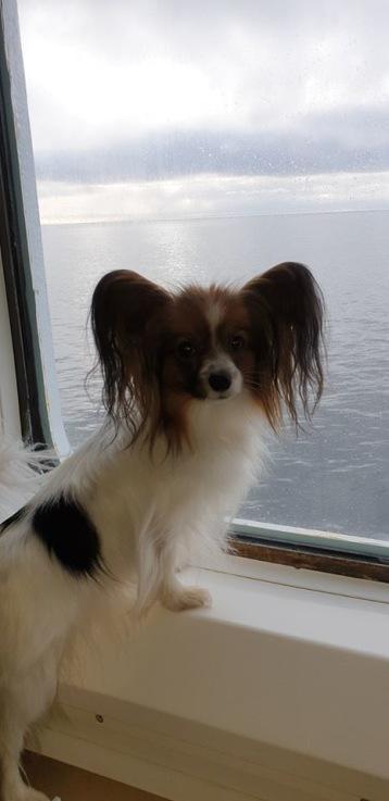 Olivia tycker det var spännande att titta ut genom hyttfönstret