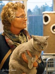 BÄSTA VUXEN HANE – S*Ninim´s Aries, blå brittiskt korthår. Ägare Suzanne Hedelind