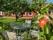 äppelträdgården