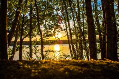 nature Sweden