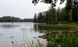Swedish lake fishing