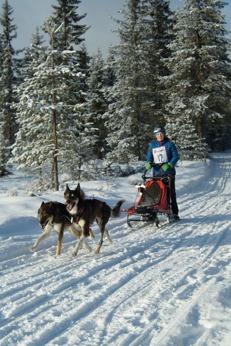 Elisabeth med sina två Alaskan huskies, Tiron och Espen. Foto:  Jose Perez