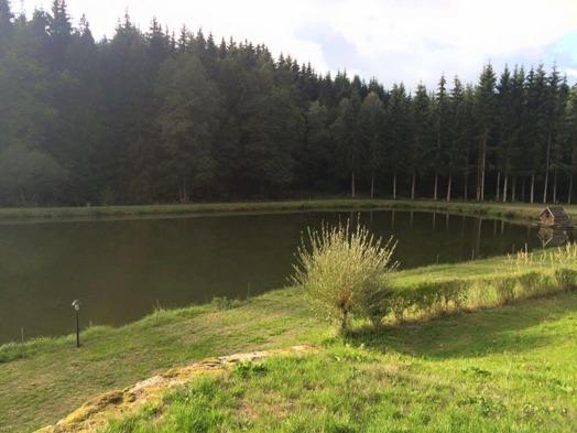 Bild från där vi simmade