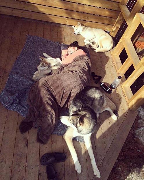 Matte ingår också i flocken och att vila samman är ofta en högt uppskattad aktivitet.