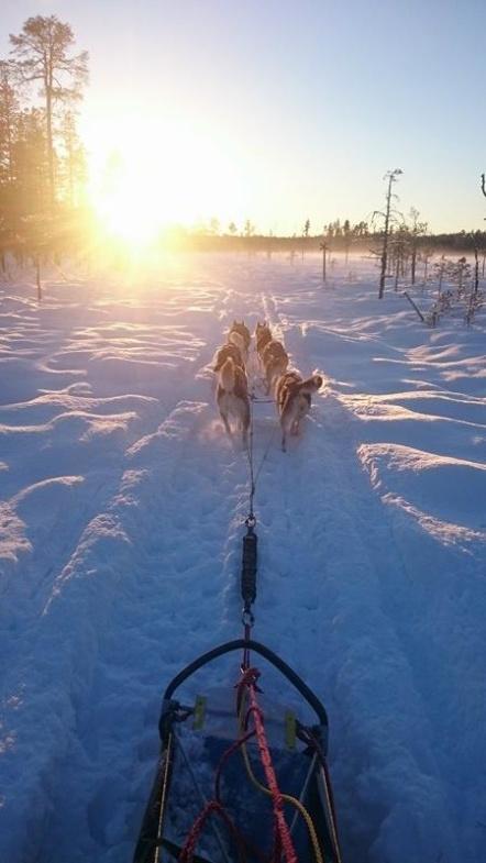 Foto: Christina Cia Sundqvist