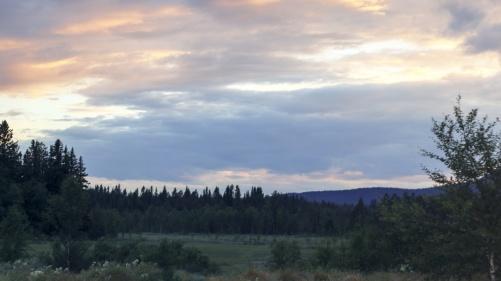 Utsikten från vårt nya hem. Häröver går skoterspår om vintern - möjligheter att starta hundarna direkt hemifrån med släden.