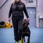 Tävlingslydnadskurs, klass 1. 1/3. Annette Ståhl.