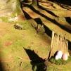 Terrakotta ägg