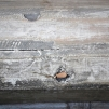 Mysigt träfönster, fyra krukor