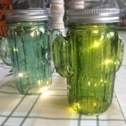 Ledkaktusar i glas