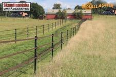 permanent stängsel för lantbruk